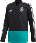 dfb training top