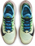 Trail shoes Nike PEGASUS TRAIL 2