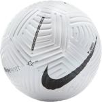 Lopta Nike NK Flight Ball