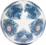 Bayern Munchen finale18 competition
