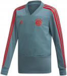 FC Bayern Munchen training J