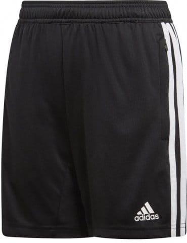 Kratke hlače adidas TIRO19 TR SHOY