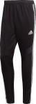 Kalhoty adidas TIRO19 TR PNTY
