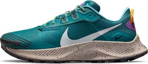 Trail shoes Nike PEGASUS TRAIL 3
