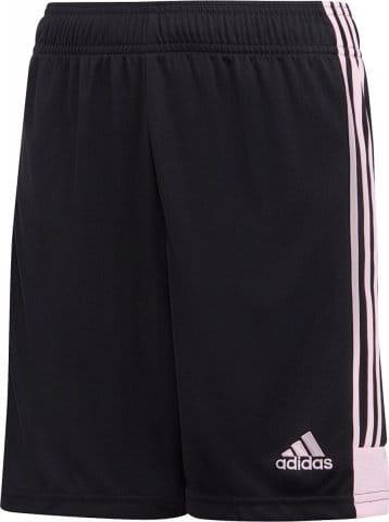 Tastigo 19 Shorts Y
