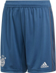 FC Bayern Munich 2019-2020 Training Shorts Y