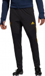 Kalhoty adidas AFC EU TR PNT