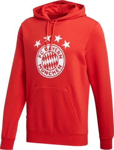 FC Bayern DNA Graphic Hoodie