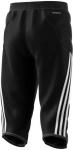 Dětské brankářské tříčtvrteční kalhoty adidas Tierro 13