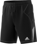 TIERRO13 Goalkeeper Shorts Youth