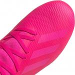 Pánské kopačky adidas X 19.3 FG