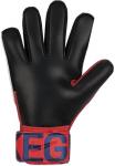 Goalkeeper's gloves Nike NK GK MATCH-FA19