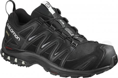 Trail shoes Salomon XA PRO 3D GTX W